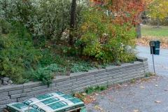 Sista lagret, med vår tokrönn som bakgrund, last four