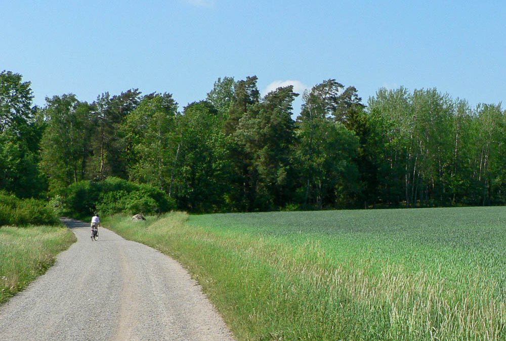 Cykla på Järvafältet