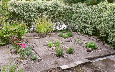 Project herb garden